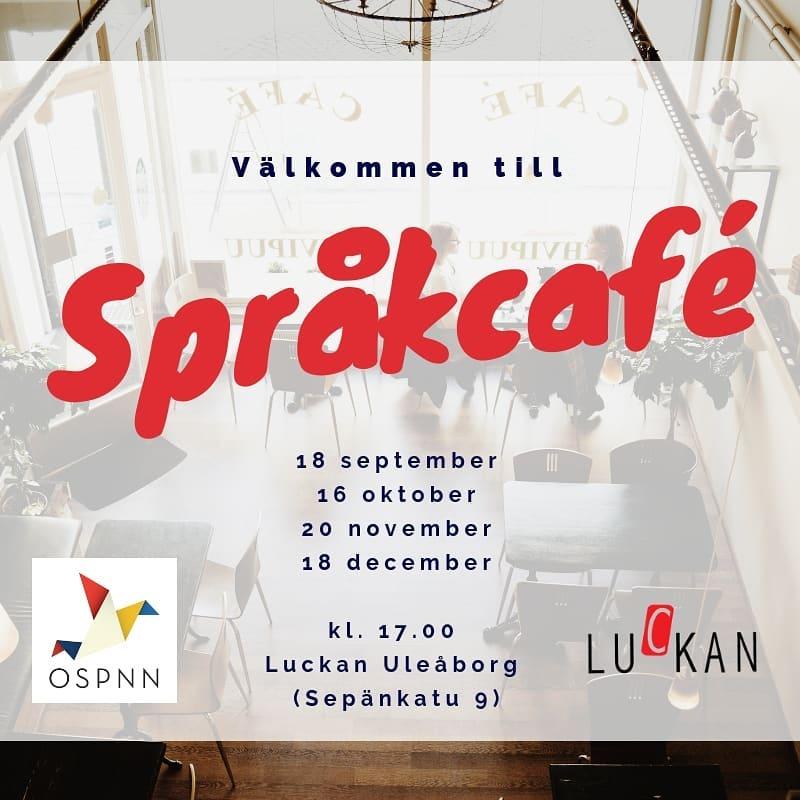 Prata svenska i Uleåborg!